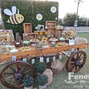 Στολισμός αίθουσας δεξίωσης Μελισσούλα